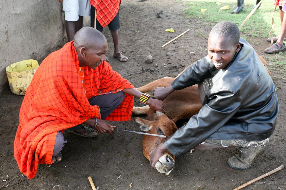 FD-IMG-1198-africa-kenya-maasai-men