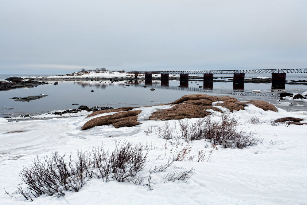 Ile aux starlettes (Port-Cartier, Québec, Canada)