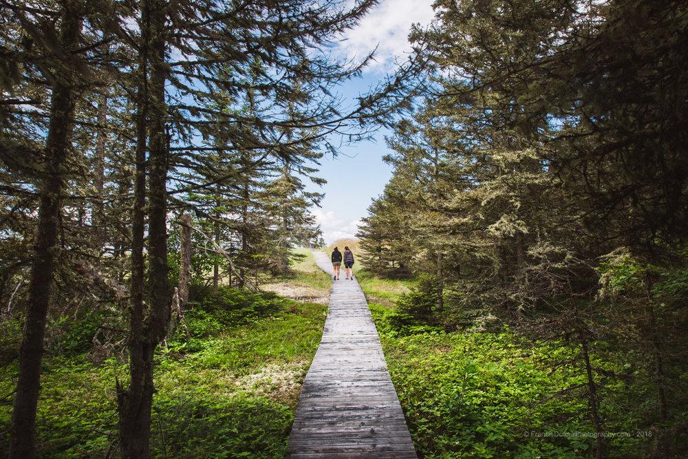 Parc nature de Pointe-aux-Outardes