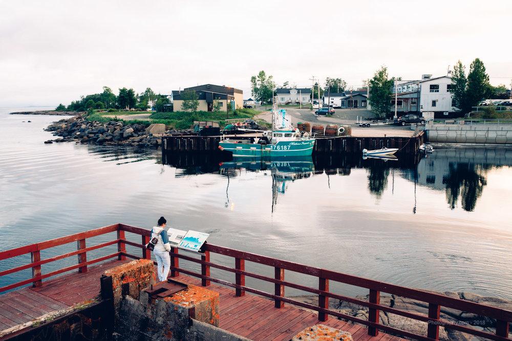 Port-Cartier - Île Patterson
