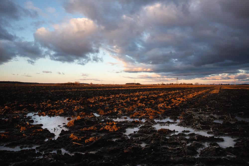 Paysage d'hiver dans le sud du Québec  — Winter landscape in southern Quebec (Henryville, Québec, Canada) — © Francisdufour.ca 2019