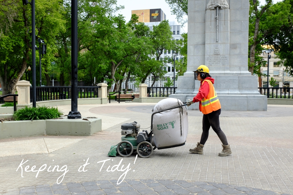 DID YOU KNOW that 83% of the city's budget is spent on repeatedly cleaning one 5' x 5' spot in the park?