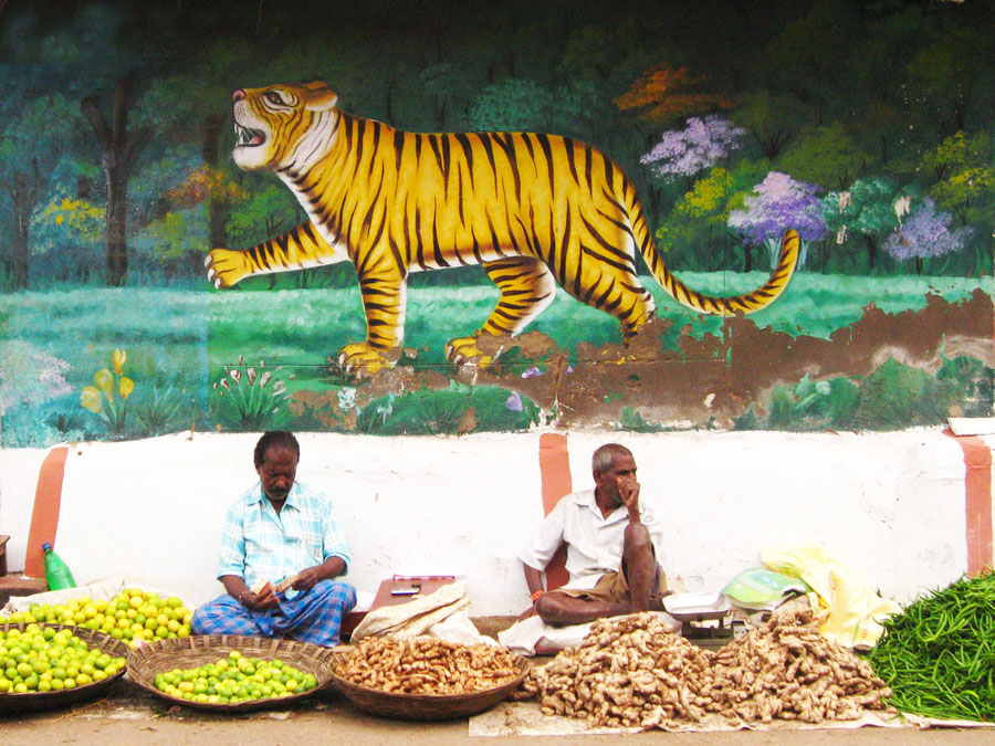 Vegetable vendors in Mysore under Tiger mural.jpg
