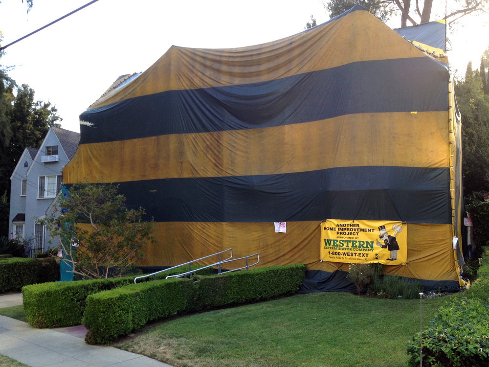 A house in Los Angeles being fumigated or something... I've never seen anything like it before or since!