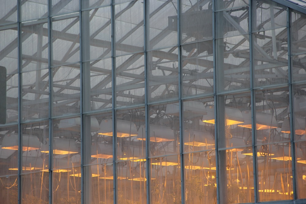 Greenhouse in Ithaca NY on Cornell University campus - very early morning