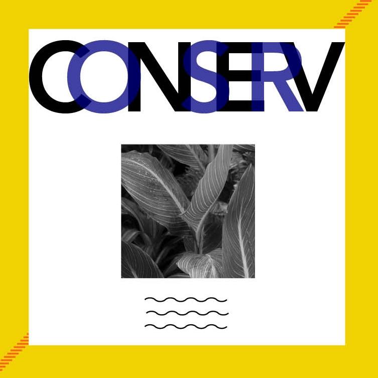 Conserv.jpg