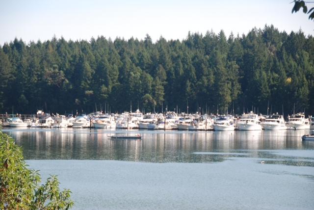 Telegraph-Harbour-Marina-Thetis-Island-Vancouver-Island-British-Columbia-Canada (15).jpg