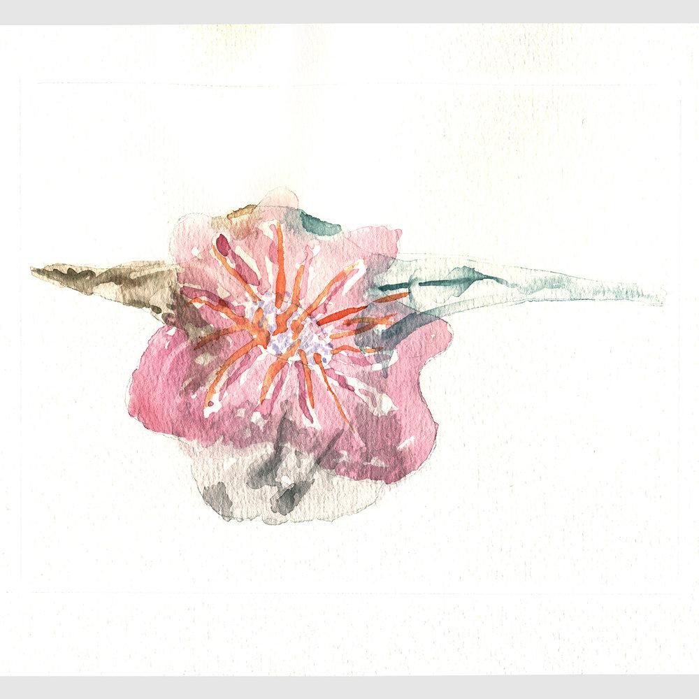 Concept exploration.Watercolour.2011
