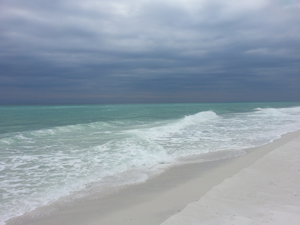 Florida Gulf Coast, Taken by P.E., Jan. 2015