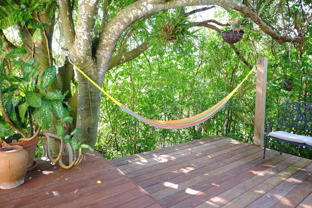 hammock WO.jpg