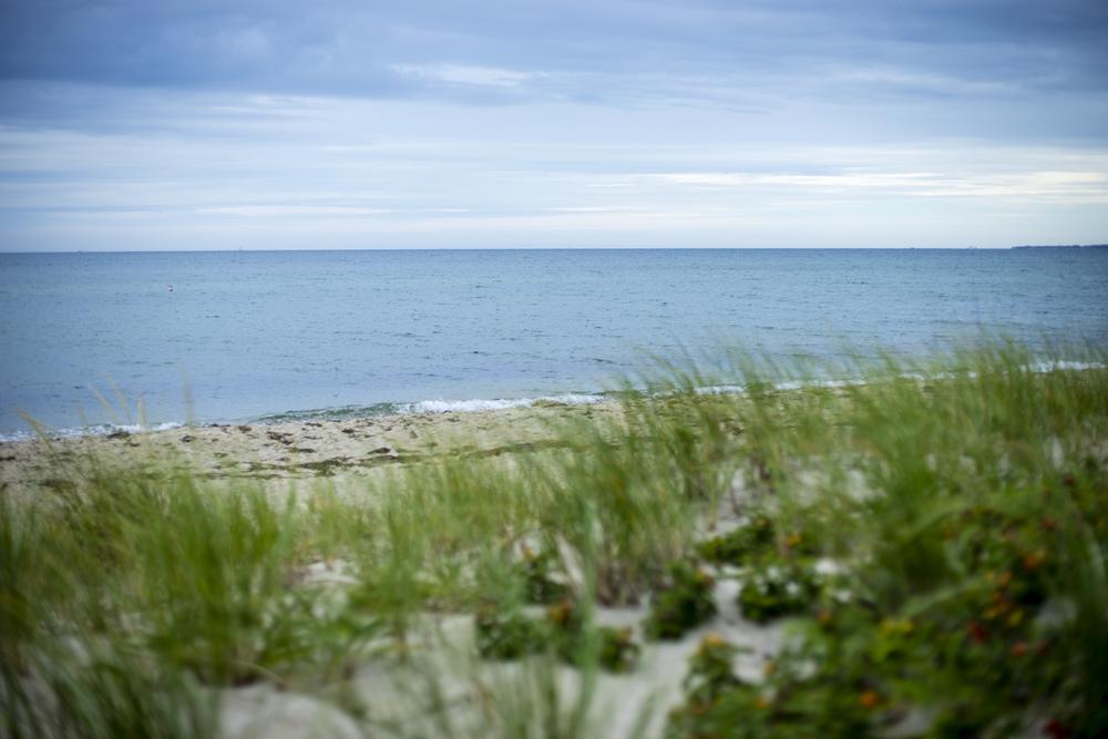 Joseph Silvia State Beach