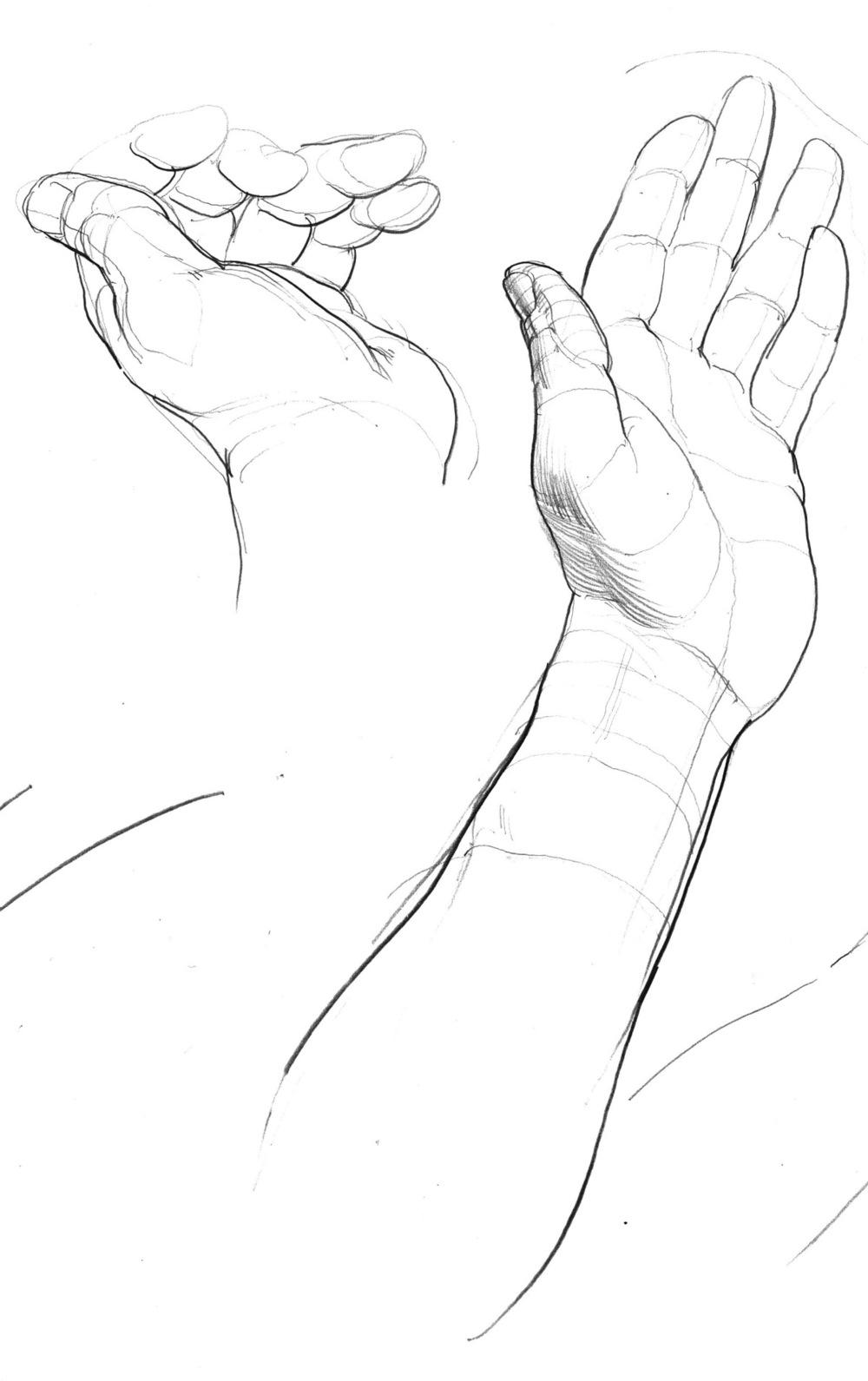 hand studies 7.jpeg
