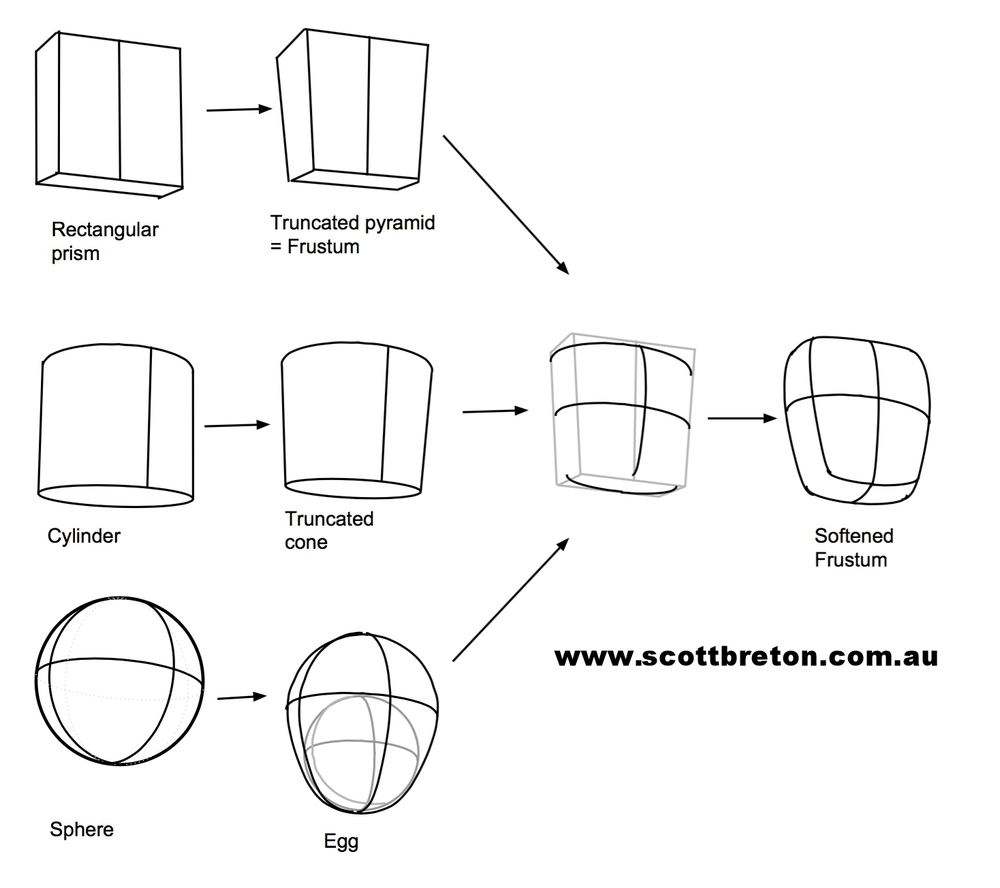 geometric to organic.jpg