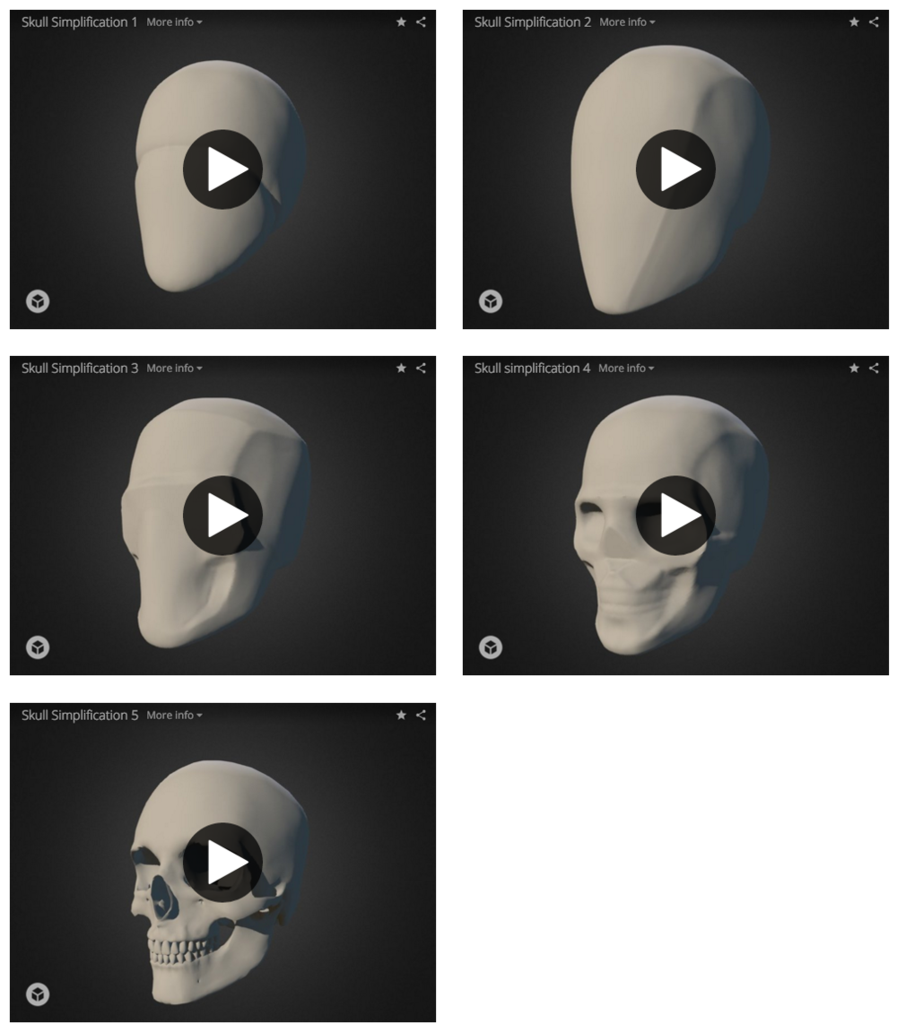 Click the image to view all models of the Skull in 3D