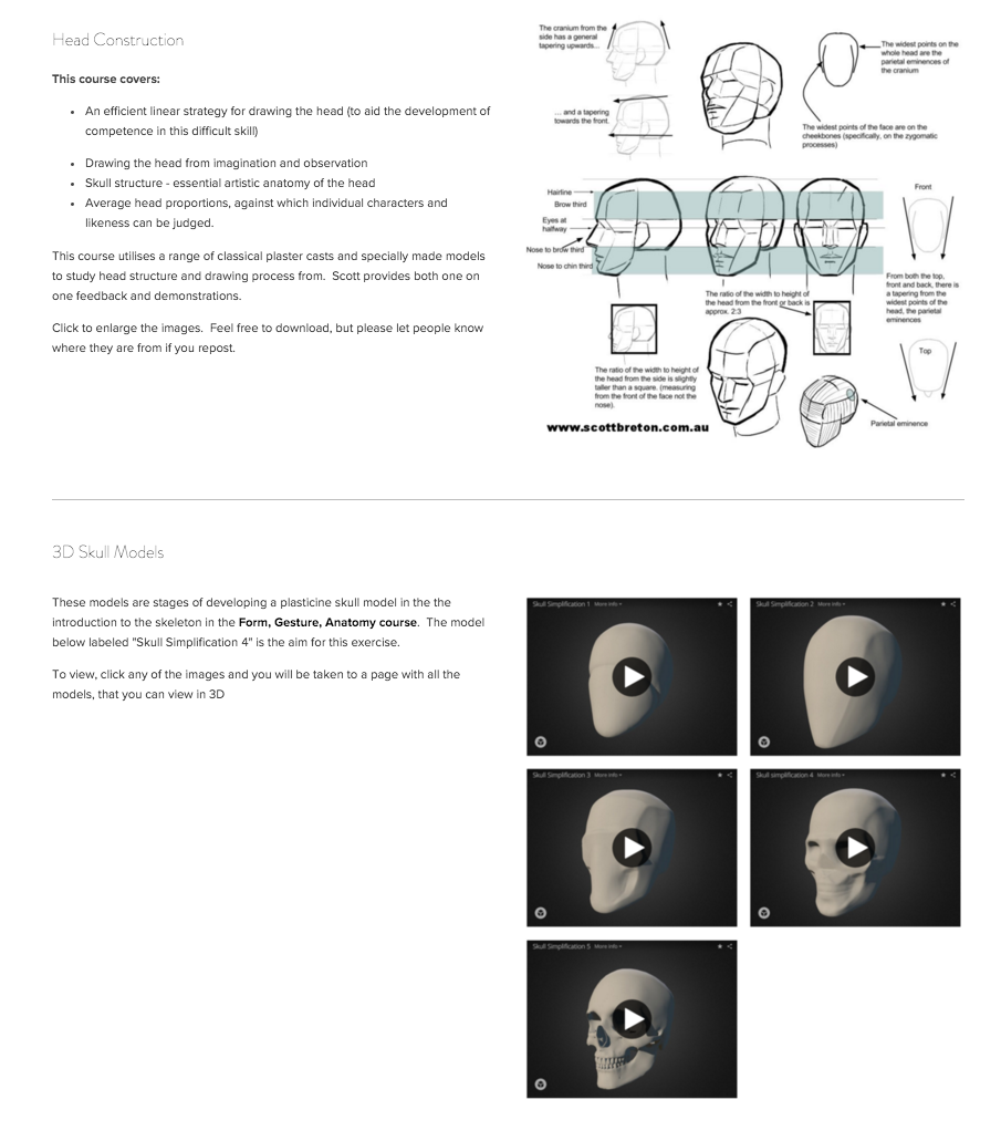 Free Art Learning Resources: Head Construction including 3D skull