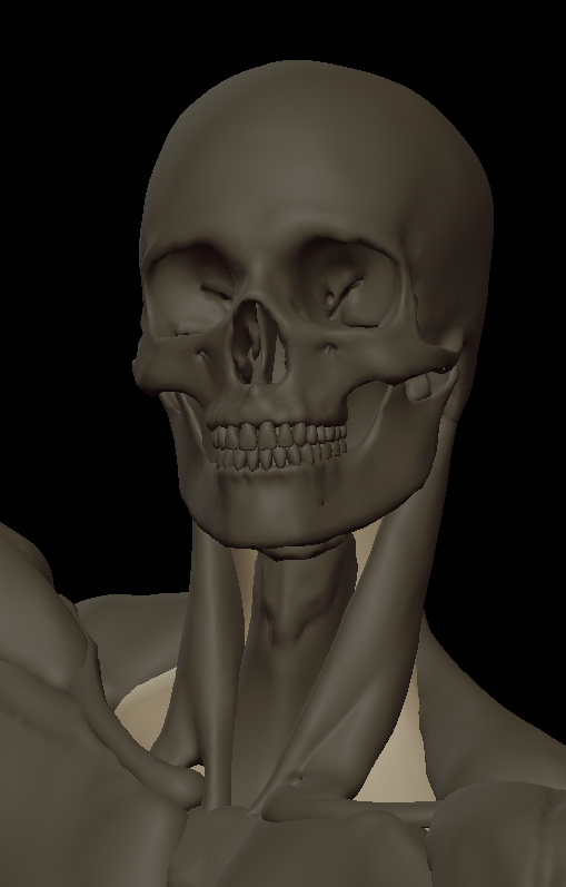 inner neck volume under.png