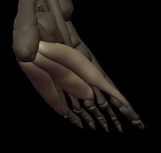 b footbot 1.png