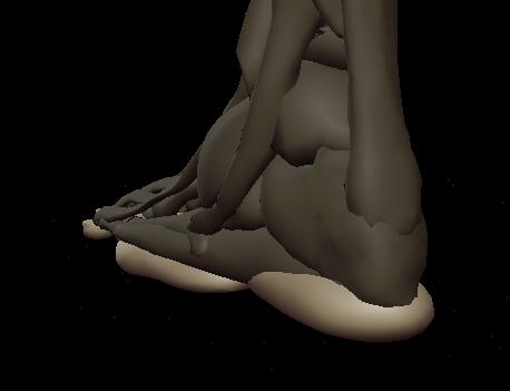 a footpads 3.png