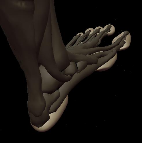 a footpads 5.png