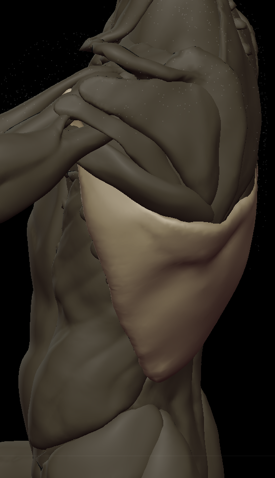 zzzz Lats 2.png