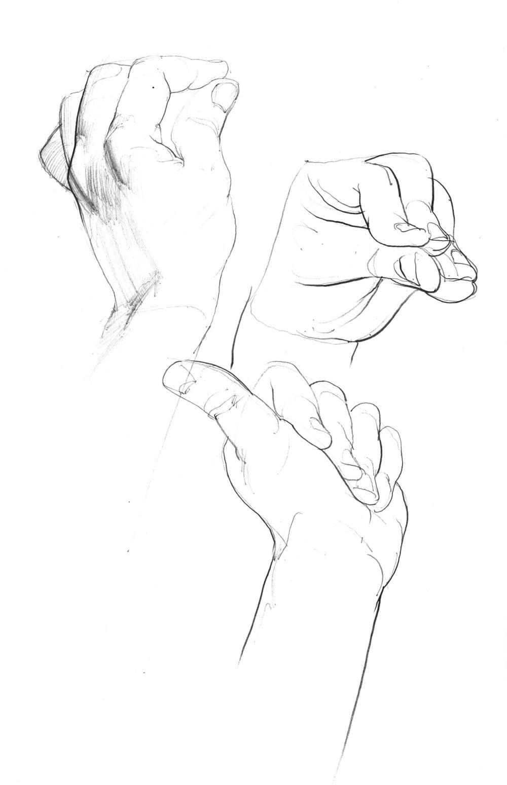 hand+studies+2.jpeg