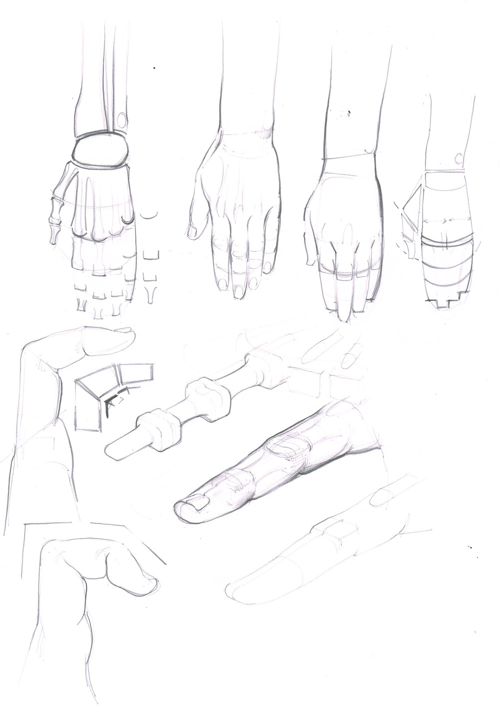 hand structure.jpeg