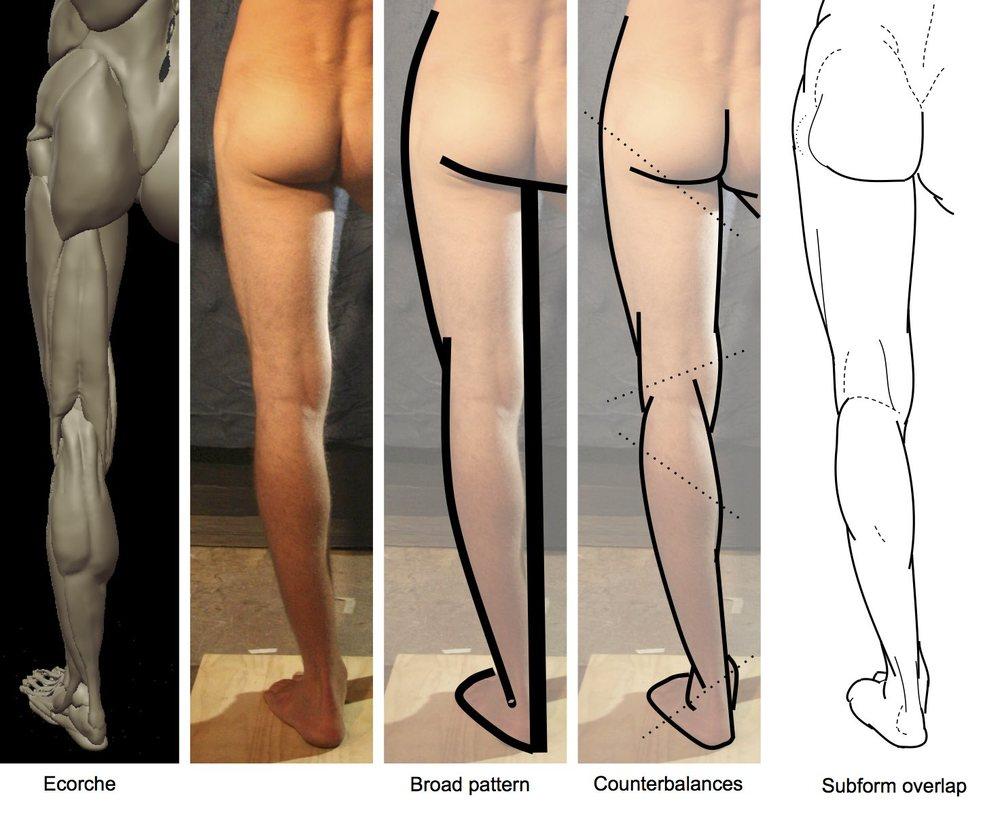 back of leg.jpg