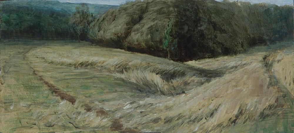 Landscape studies - 2.jpg