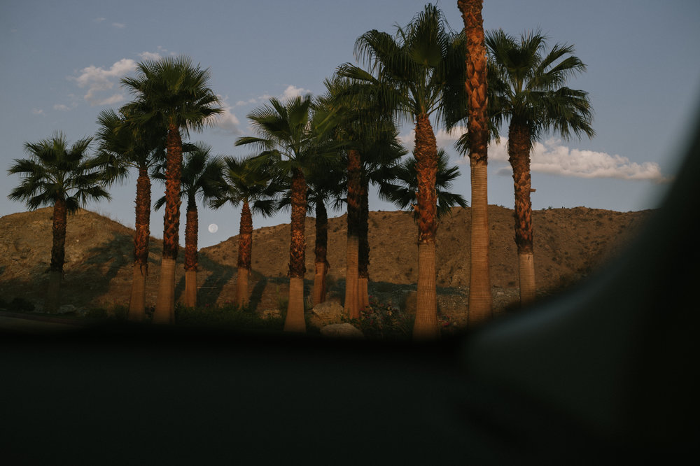 The-Glossier-Palm-Springs-CA-4.jpg