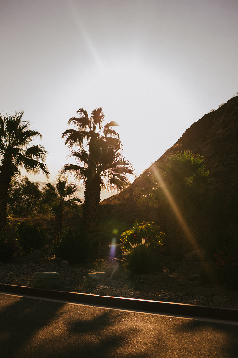 The-Glossier-Palm-Springs-CA-11.jpg