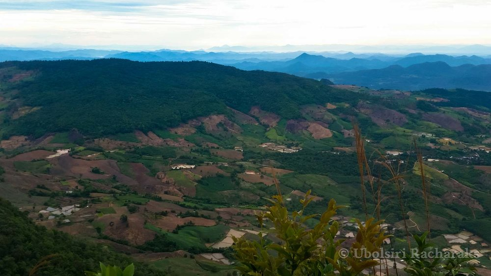 Green Valley Below Phu Ruea