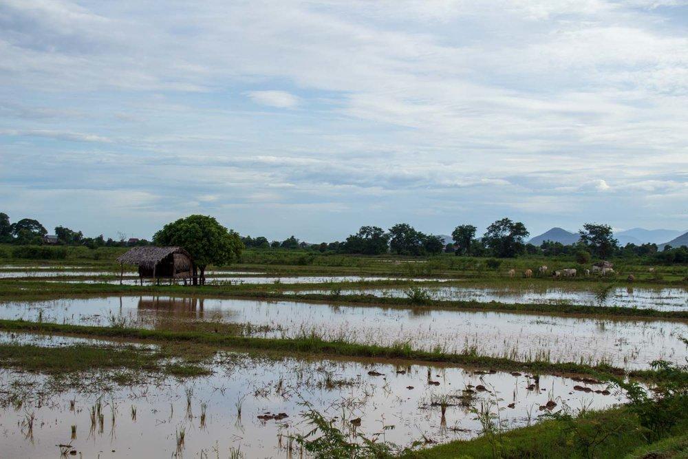 Cambodia - Kampong Chhnang--2018-13.jpg