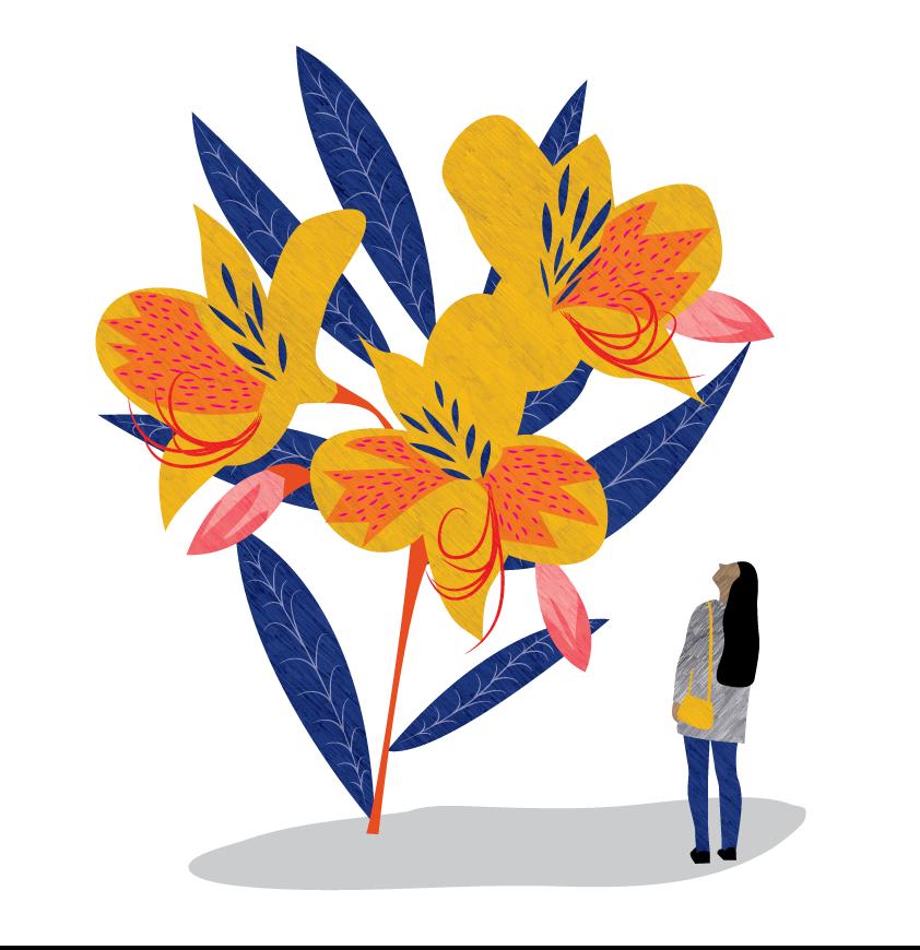 Bloom - Self initiated