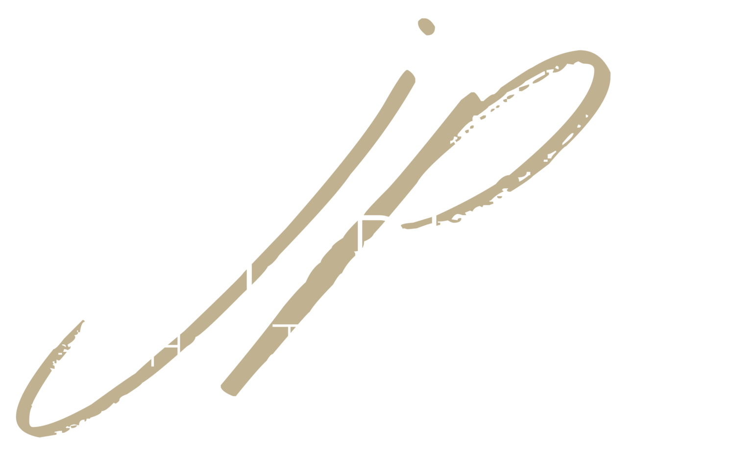 Durban Wedding Photographers Jay Pillay Photography