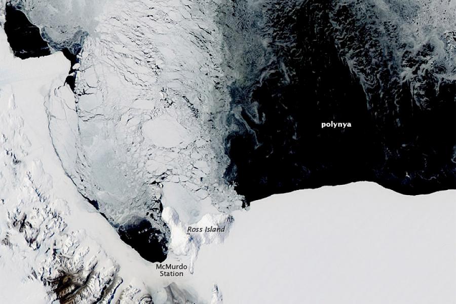 LAST  SEA  ICE AND THE  NORTHEAST WATER  POLYNYA -