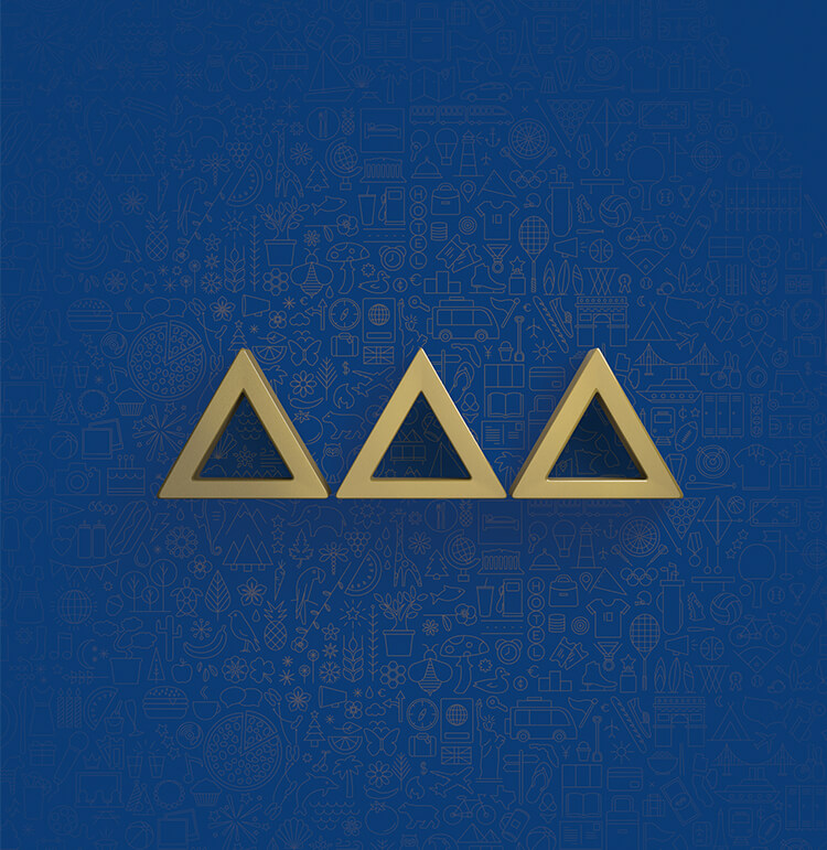 Tri Delta  View Full Project →