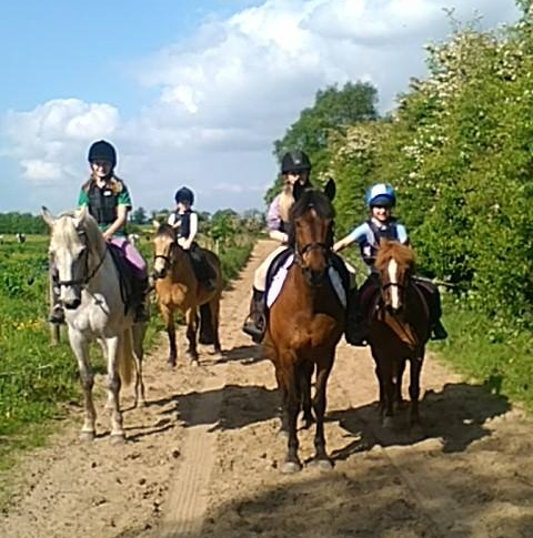 Kids & adults can learn to ride at our AIRE approved riding school