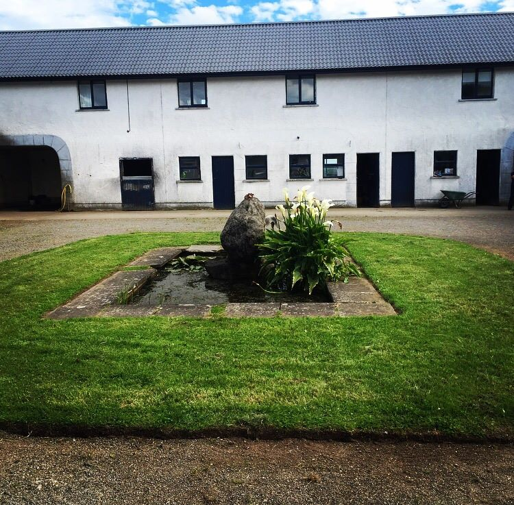 Our courtyard livery stables at Dunbyrne Equestrian