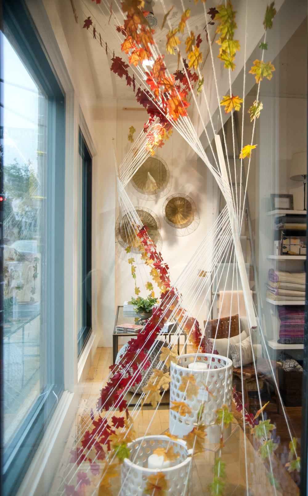 window display fall 2018.jpg
