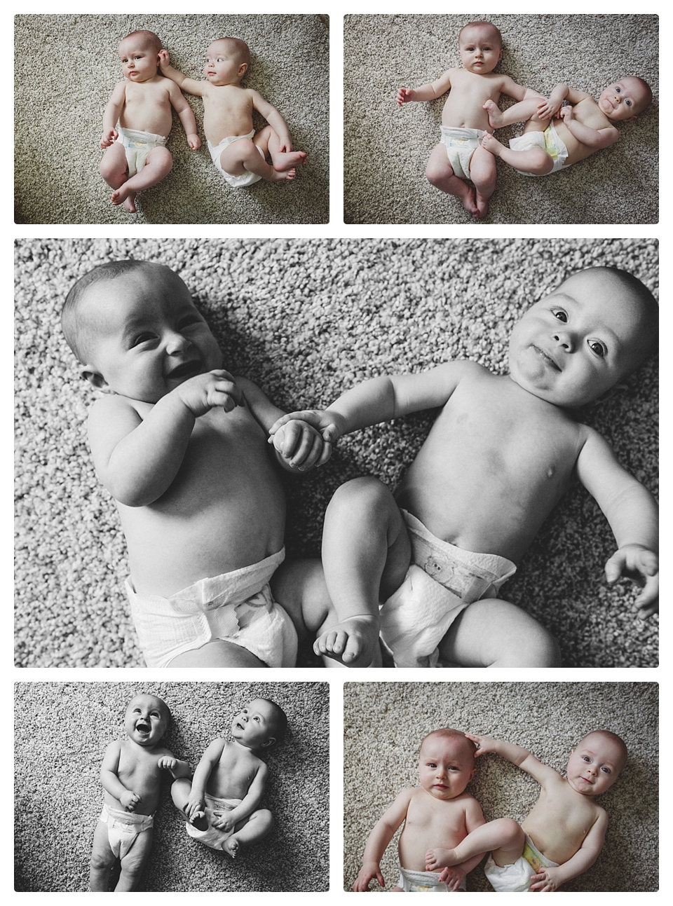 twin baby photography