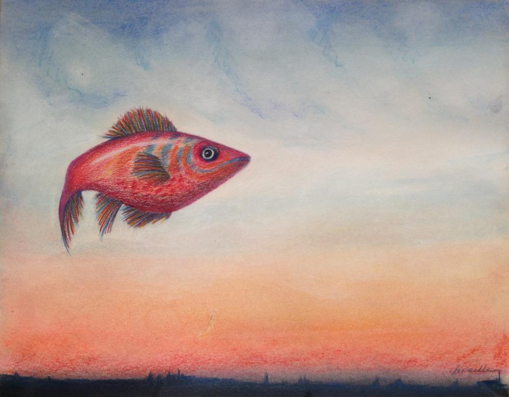 Fish in Sky.jpg