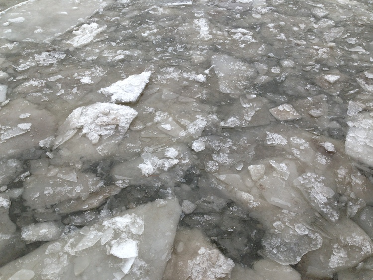 Broken ice floating on the Hudson