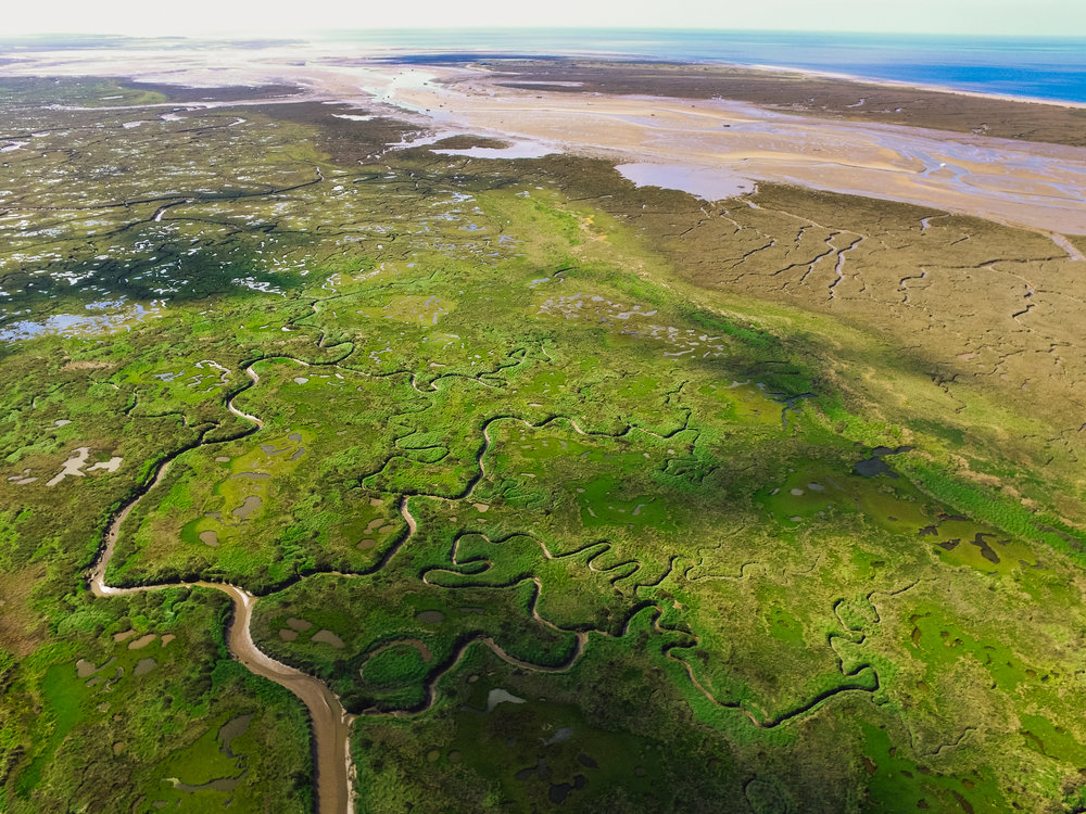 The Norfolk salt marshes from above
