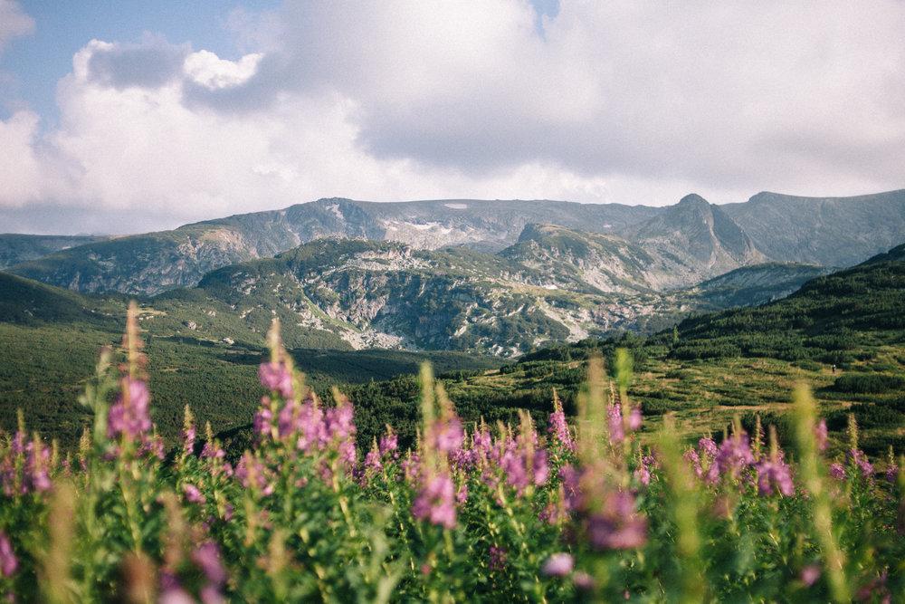 Bulgaria_0046.jpg