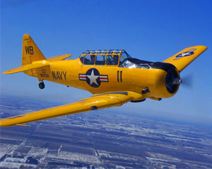 t6-texan-aerobatic-flight-30-minute-chicago_large.jpg