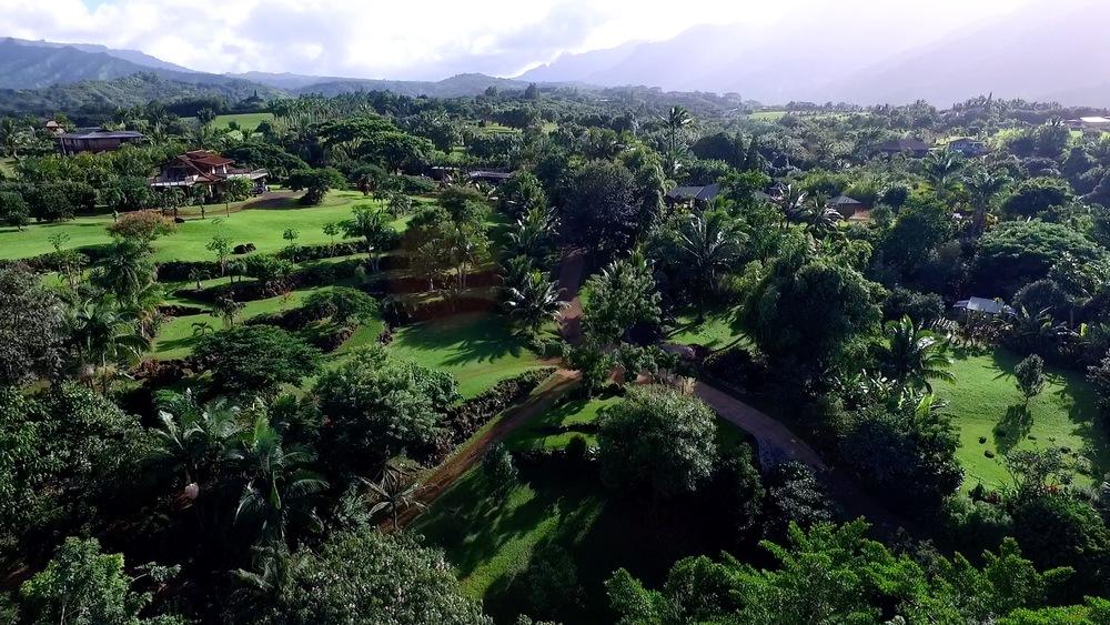 Princeville Botanical Gardens Aerials 4.jpeg