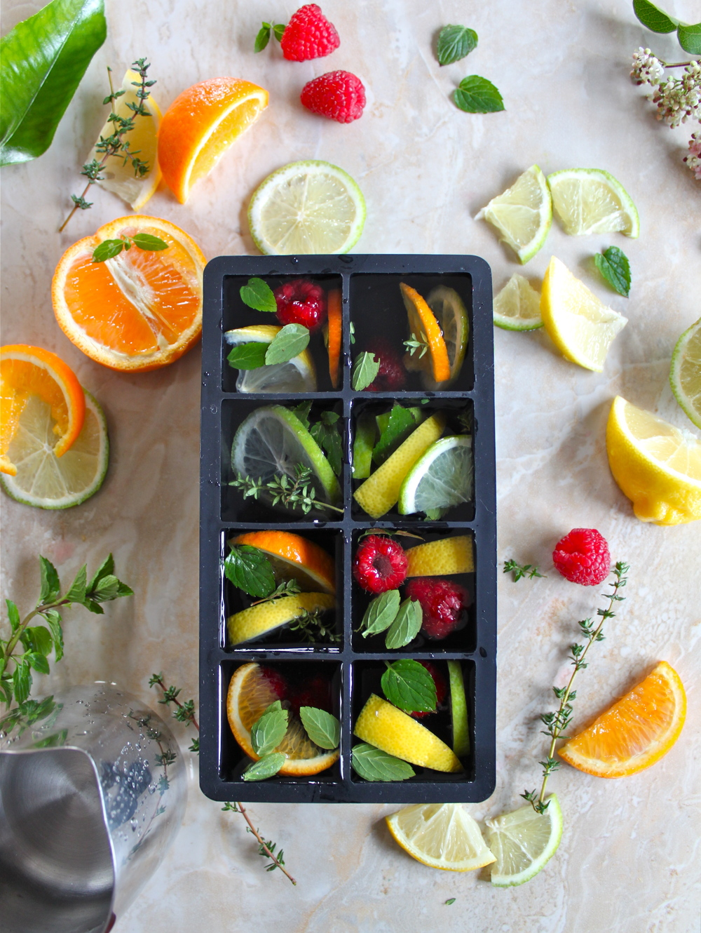citrus & herb ice cubes_6.jpg