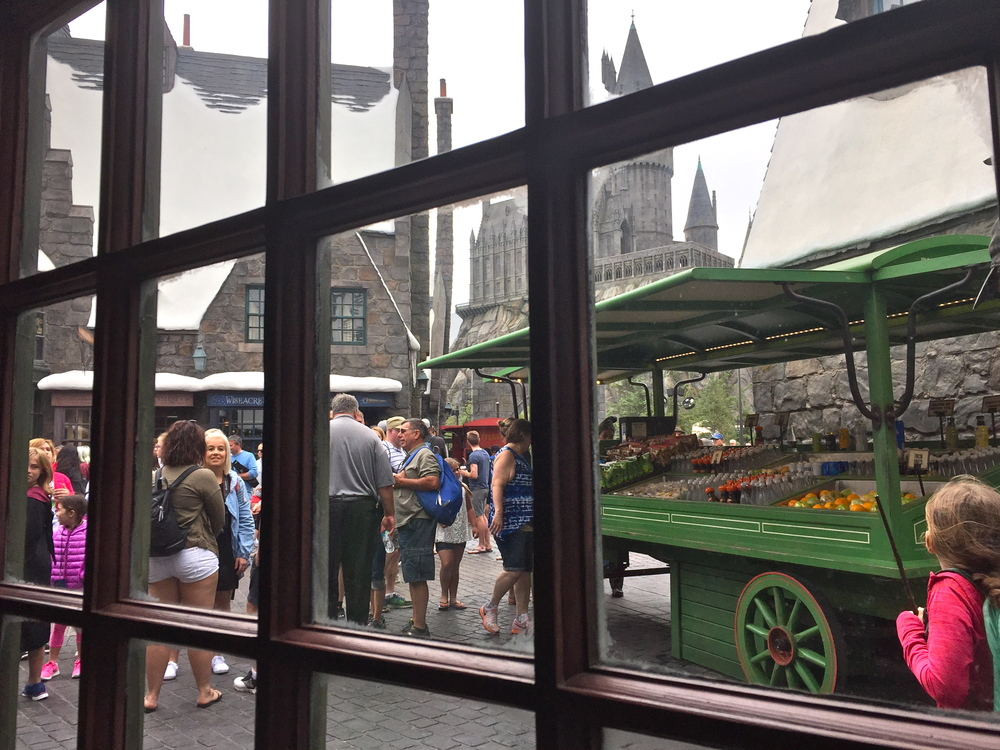 harrypotterworldhollywood_44.JPG