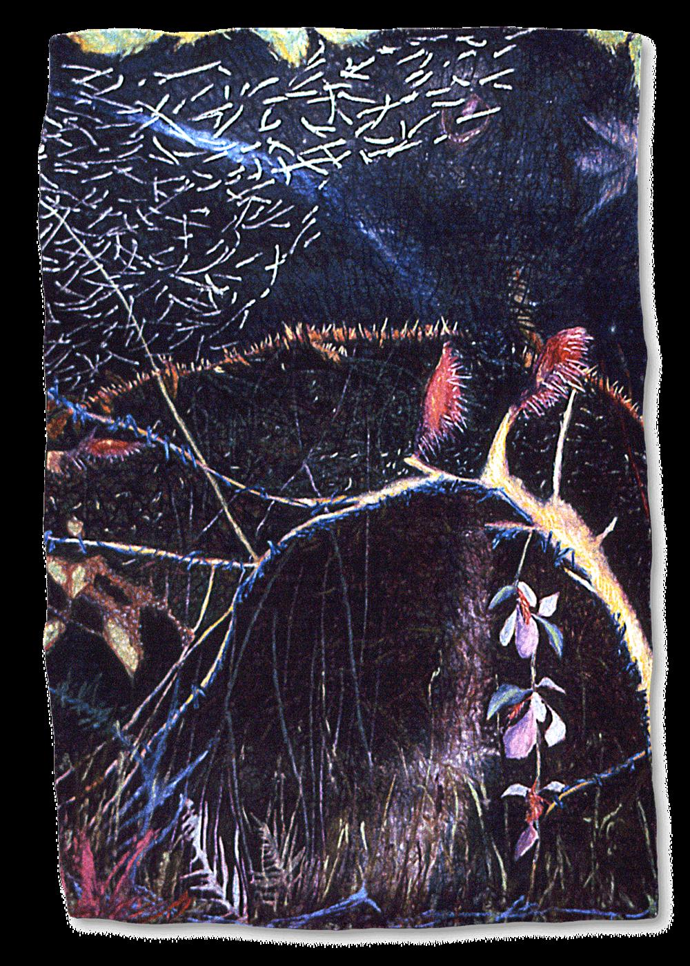 Fern Forest #2