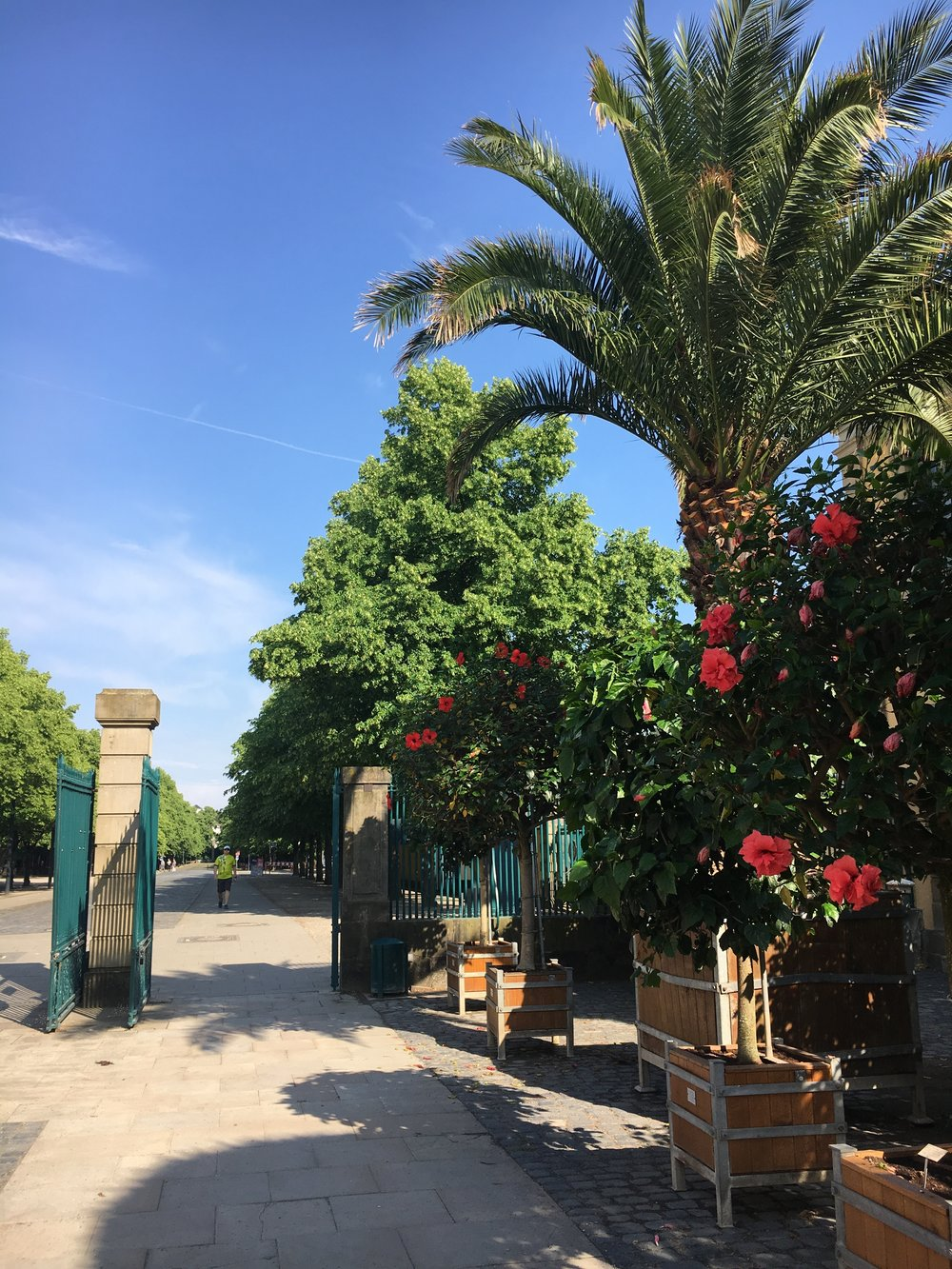 Hannover_Herrenhäuser-Garten-1